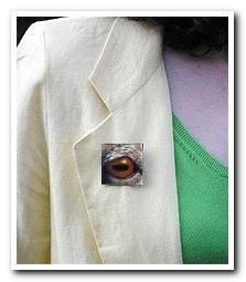 Eye Help Animals Bighorn Sheep Wildlife Collectible Pin #9 worn by the artist DJ Geribo