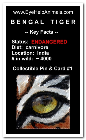 Eye Help Animals Bengal Tiger Wildlife Collectible Pin #1 - Front