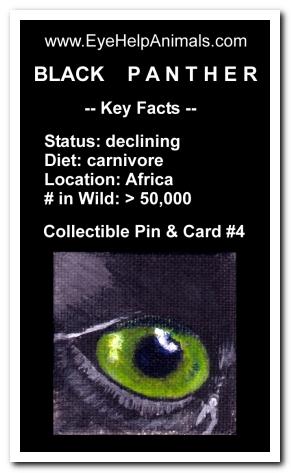 Eye Help Animals Black Panther Wildlife Collectible Pin #4 - Front