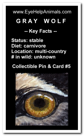 Eye Help Animals Gray Wolf Wildlife Collectible Pin #5 - Front
