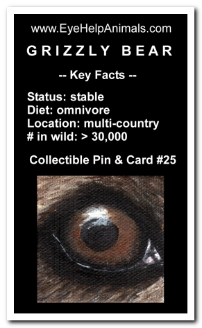 Eye Help Animals Grizzly Bear Wildlife Collectible Pin Card #25 - Front