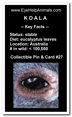 Eye Help Animals Koala Wildlife Collectible Pin Card #27 - Front