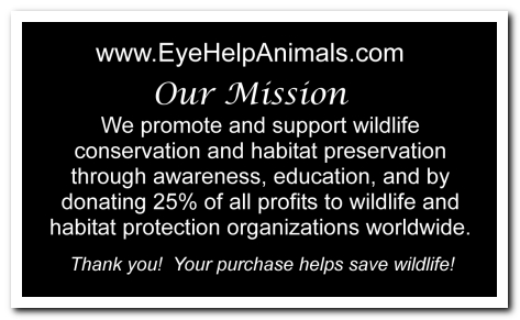Eye Help Animals Bengal Tiger Wildlife Collectible Pin Card #1 - Back
