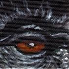 Mountain Gorilla Eye Wildlife Collectible Pin