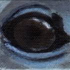 Bottlenose Dolphin Eye Wildlife Collectible Pin