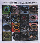 EyeHelpAnimals.com T-Shirt - 2nd Edition