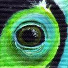 Keel-Billed Toucan Eye Wildlife Collectible Pin
