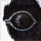 Giant Panda Eye Wildlife Collectible Pin