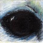 Polar Bear Eye Wildlife Collectible Pin