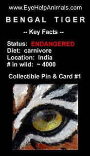 Wild Animal Eye Collectible Pin
