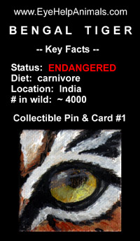 Wildlife Eye Collectible Pin & Card at EyeHelpAnimals.com