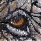 eye-help-animals-elephant-wildlife-eye-painting-by-artist-dj-geribo